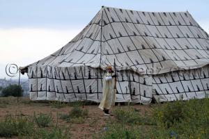 Khayma Mariage avec fantasia à Chetouane Tlemcen