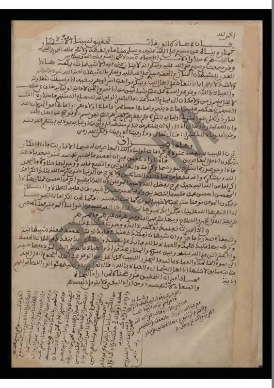 نسب سيدي محمد بن القاسم القندوسي