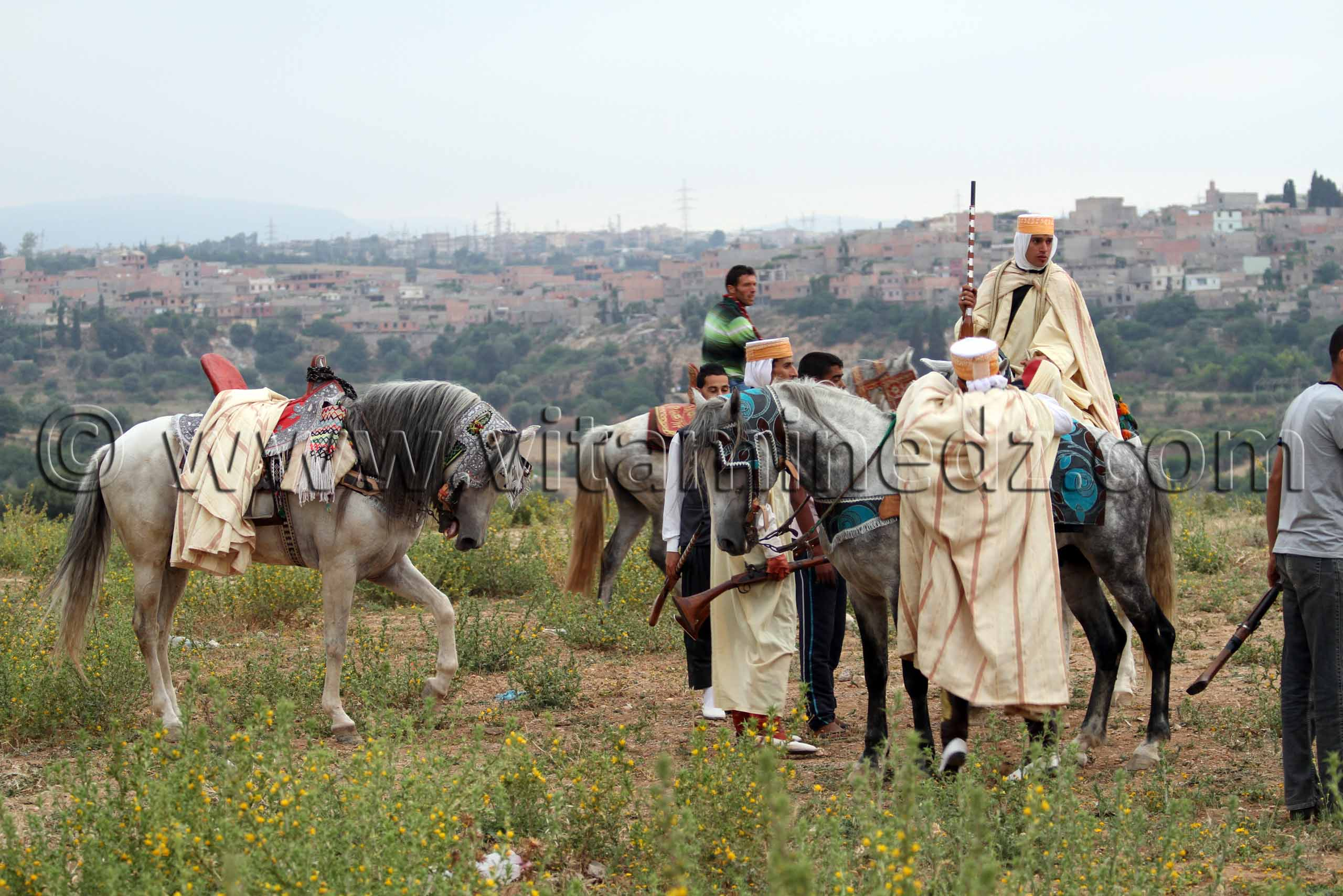 Cherche femme pour mariage algerie tlemcen