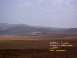 الحامة بلدية الورشات في جميع الميدين