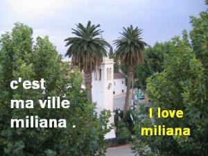 Miliana - Une victoire de la commune sur le commerce informel