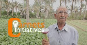 Maghreb - Tunisie: Passer du conventionnel au bio
