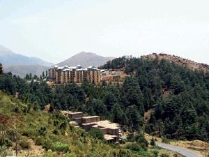 Haizer (Bouira) - Un incendie d'origine criminelle s'y est déclaré: La cédraie de Tikjda sauvée in extremis