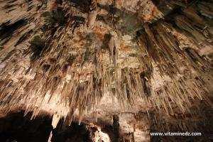Tlemcen-Les grottes de Beni Add Un site datant de 65 000 ans