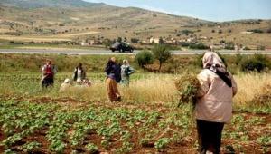 Guelma - Appel à la création d'un réseau national de conseillères agricoles chargé de la femme rurale