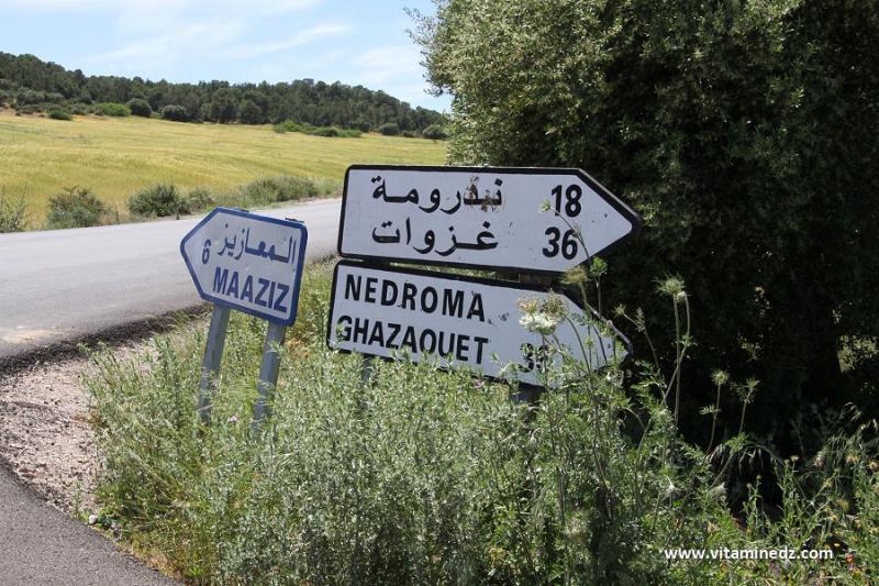 Hammam Boughrara, une vaste commune aux potentiels naturels immenses