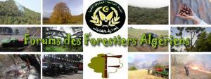 Sidi-bel-abbès - Les forestiers souhaitent la restitution de leurs armes