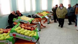 La pomme en fête dans la commune d'Oued Taga (Batna)