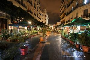 Photo Alger, La nuit, les fleuristes de la grande poste
