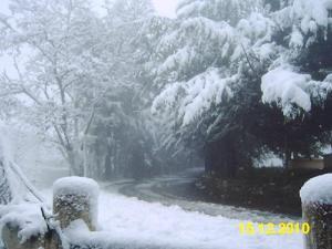 Agouni Boughar sous la neige 3 - La petite Suisse