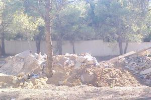 Seul lieu de détente et espace vert de la ville: Une forêt urbaine en péril à Oum El-Bouaghi