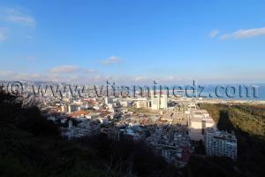 Vue des hauteurs d\'� Alger