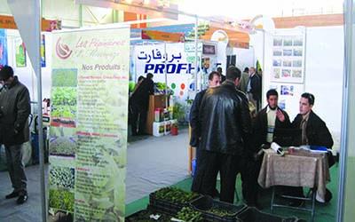 Th�matique au Salon Sud�Agral -  L�exploitation de l��nergie solaire en d�bat � El Oued
