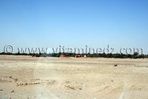Ksar Touki Commune de Tamentit, Wilaya d\'Adrar