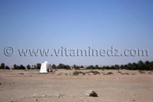 Marabout Abenkour Commune de Tamentit, Wilaya d\'Adrar