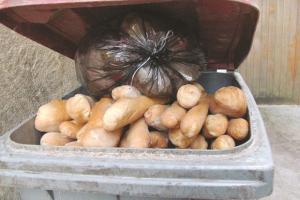Les Algériens dépensent chaque jour 1 milliard de centimes en pain:  Plus de 40 millions de dollars gaspillés annuellement