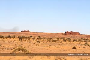 Serie de Ksour perdus du Gourara (Au lieu dit Basalem entre El Hadj Guelmane et Ksar Kaddour)