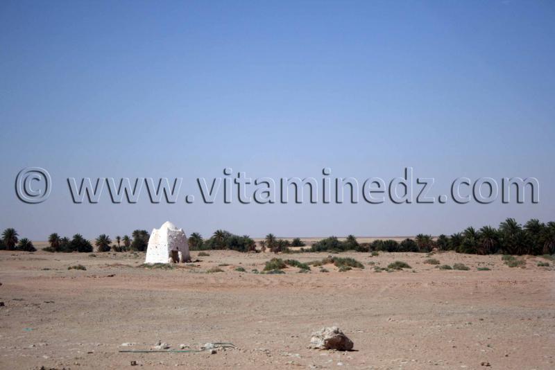 Marabout Abenkour Commune de Tamentit, Wilaya d'Adrar
