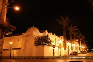 La grande Mosquée trop calmepar un Mouled à Tlemcen, les zaouias prennent le relai