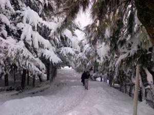 Le village sous la neige - La beauté de la Kabylie