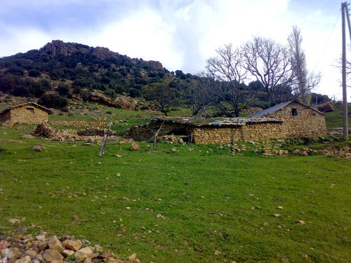 حياة سكان الجبال ---------شليا----