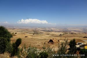 Terres agricoles fertiles vues depuis l'autorote Est Ouest à Khmis Miliana
