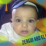 زرقي عبد الحي