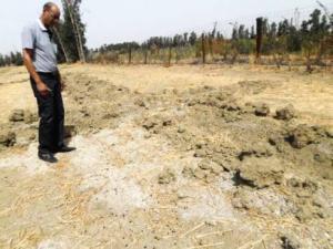 Chlef - Agriculture: Le sel tue à petit feu la vallée du Cheliff