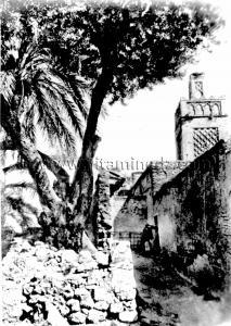 Tlemcen Photo Ancienne - Mosquée Sidi Lahcene Errachidy