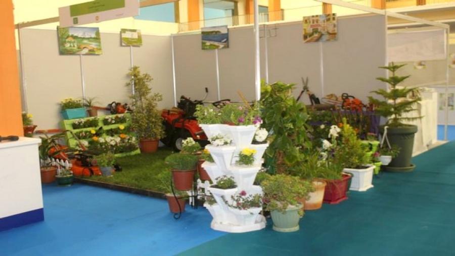 Tlemcen un salon pour les espaces verts et floralies for Salon espace vert lyon