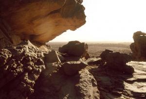 Algérie - Tassili, Gravures rupestres