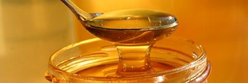Les aliments prophétiques : Al 'asal, le miel.