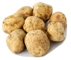 El-Bayadh - La truffe blanche arrive… mais à quel prix ?