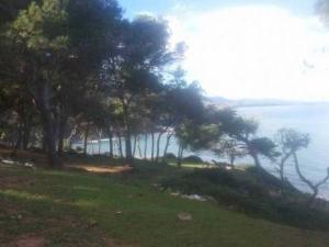 Tipasa - Amn�sie autour d�un projet de massacre environnemental