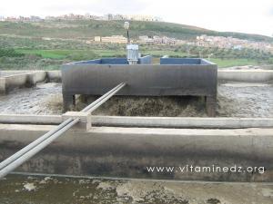 Station d\'epuration des eaux usées de Tlemcen - Ain El Hout