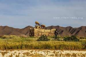Nouvelle stele a Mecheria representant 2 antilopes