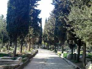 Constantine - Des volontaires nettoient le cimetière central