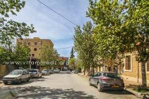 Tlemcen - Quartier de Bel air