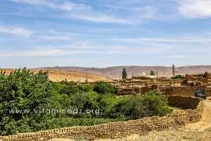 Jardins et vieux Ksar d\'El Ghicha (Wilaya de Laghouat)