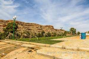 Jardins artificiels d\'El Ghicha (Wilaya de Laghouat) trouvez l\'intrus