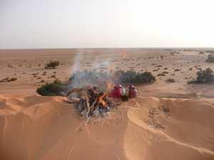 le desert fascinant