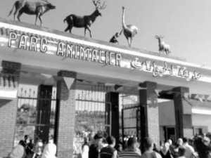 El Aouana (Jijel) - Parc animalier de Kissir: Le point de chute pr�f�r� des estivants