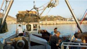 Ghazaouet (Tlemcen) - Reportage: Sortie en mer à bord d'un sardinier