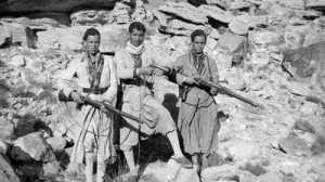 La guerre d'Algérie:  quand les Algériens redécouvrent leur histoire