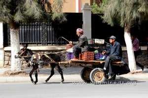 Marchand de légumes ambulant à Sidi Bel Abbes