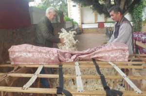 Kouba (Alger) - LES PETITS MÉTIERS D'ANTAN: Profession matelassier