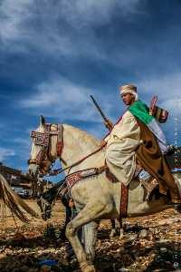 Jeune cavalier, Waada à boujmil a 10 km de Tlemcen (novembre 2009)