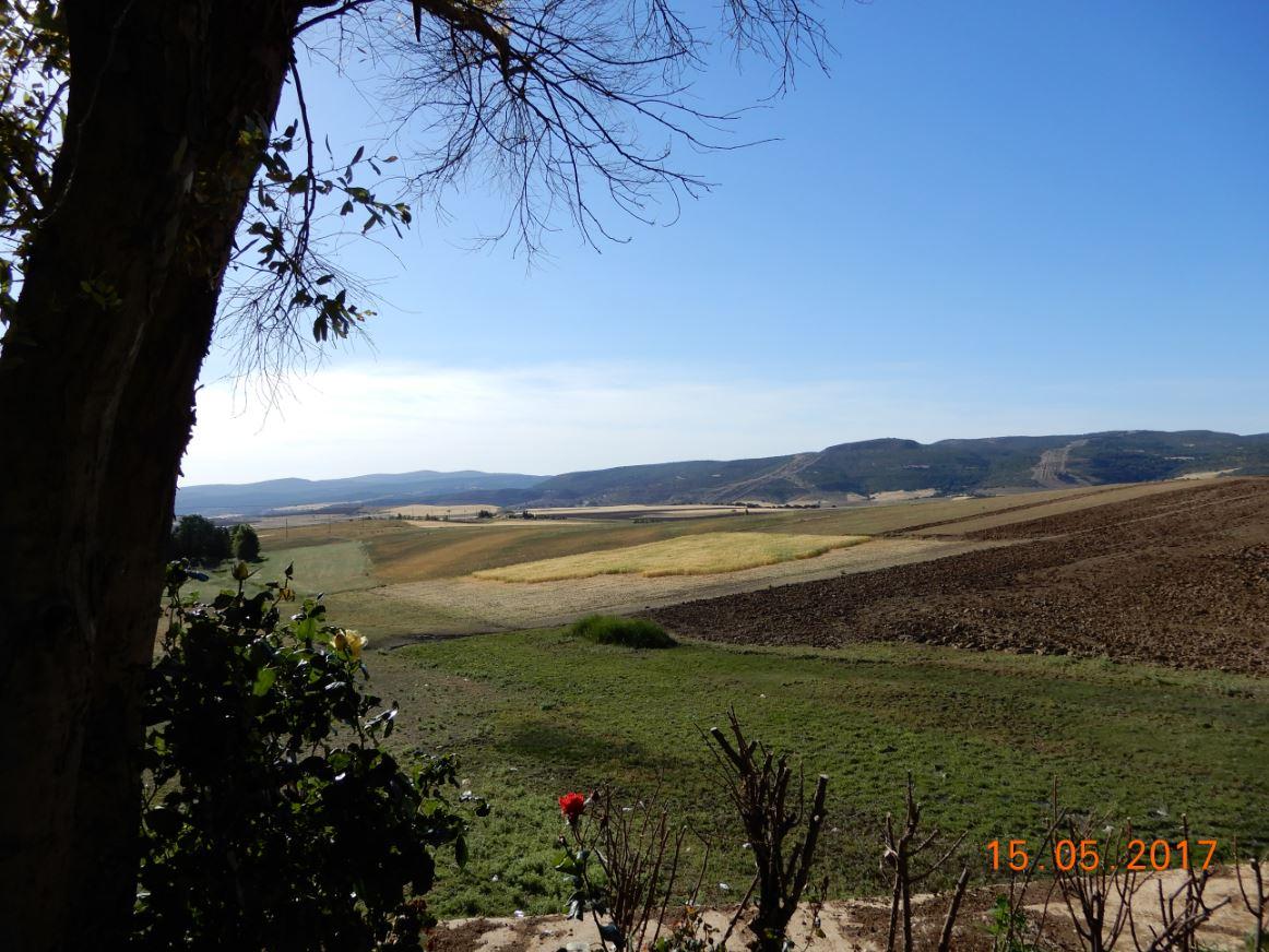 Tiaret region de Mecharef, ouest du Sersou.