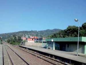 Transport ferroviaire à Jijel: L'autorail n'est pas pour demain
