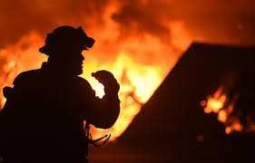 Les feux de forêt accablent les villages de Skikda: Les habitants de Merj-Bouchbel dénoncent